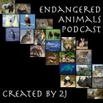 Endangered Animal Podcasts